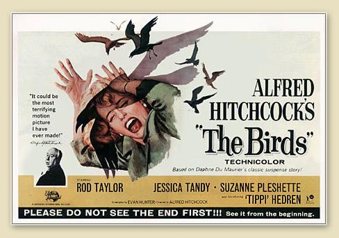 Plakat-Hirchcock-Die-Voegel